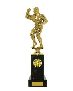 Male One Arm Up Physique Award