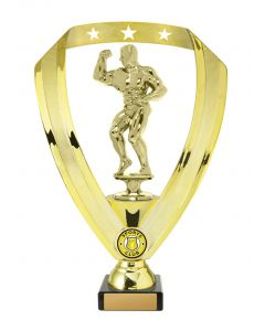 Gold Ribbon Male Flex Body Building